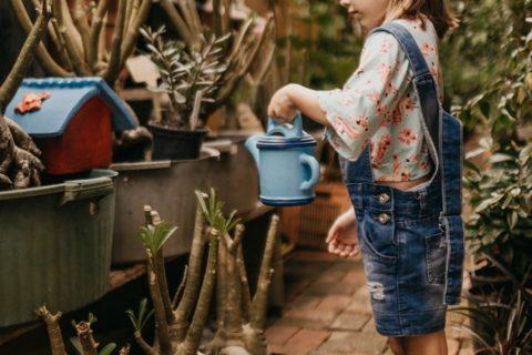 Pige der vander sine planter med en fin vandkande