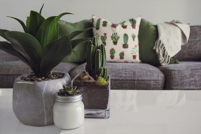 Byg din egen sofa med en modulsofa fra Zonexlnt.dk